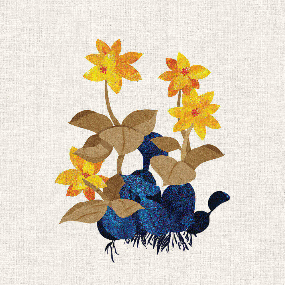 Jeoseung-Flower-07